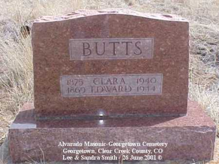 BUTTS, EDWARD - Clear Creek County, Colorado | EDWARD BUTTS - Colorado Gravestone Photos