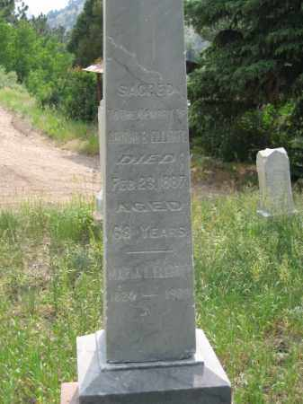 ELLIOTT, MARIA L. - Clear Creek County, Colorado | MARIA L. ELLIOTT - Colorado Gravestone Photos
