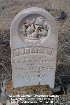 FELLOWS, DUBOIS W. - Clear Creek County, Colorado | DUBOIS W. FELLOWS - Colorado Gravestone Photos