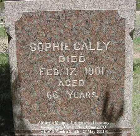 GALLY, SOPHIE - Clear Creek County, Colorado | SOPHIE GALLY - Colorado Gravestone Photos