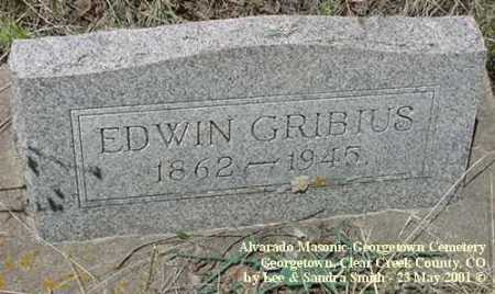 GRIBIUS, EDWIN - Clear Creek County, Colorado | EDWIN GRIBIUS - Colorado Gravestone Photos