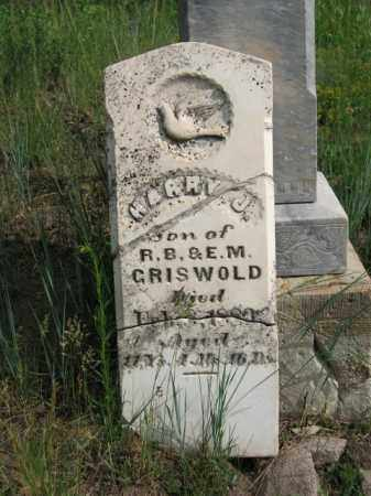 GRISWOLD, HARRY J. - Clear Creek County, Colorado | HARRY J. GRISWOLD - Colorado Gravestone Photos