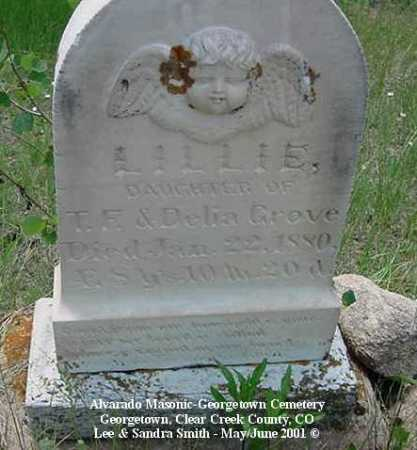 GROVE, LILLIE - Clear Creek County, Colorado | LILLIE GROVE - Colorado Gravestone Photos