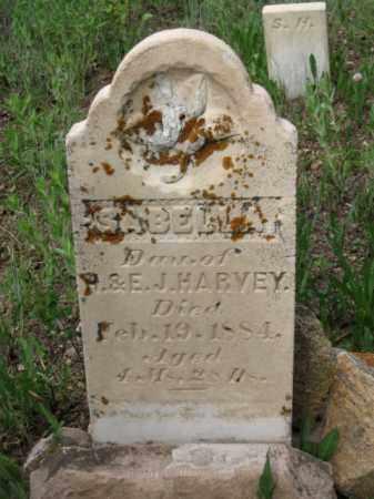 HARVEY, SABELLA - Clear Creek County, Colorado | SABELLA HARVEY - Colorado Gravestone Photos