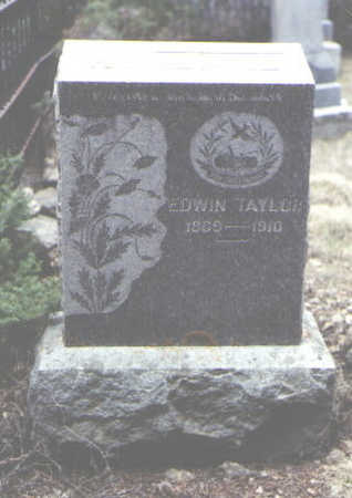 TAYLOR, EDWIN - Clear Creek County, Colorado | EDWIN TAYLOR - Colorado Gravestone Photos