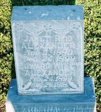 ALEXANDER, JANET - Conejos County, Colorado | JANET ALEXANDER - Colorado Gravestone Photos