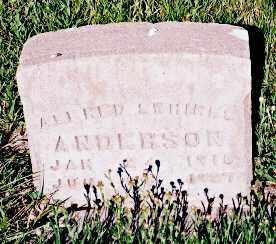 ANDERSON, ALFRED SWHIRES - Conejos County, Colorado | ALFRED SWHIRES ANDERSON - Colorado Gravestone Photos