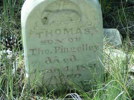 PINGELLEY, THOMAS - Custer County, Colorado | THOMAS PINGELLEY - Colorado Gravestone Photos