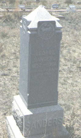 SANDERS, EDWIN H. - Custer County, Colorado | EDWIN H. SANDERS - Colorado Gravestone Photos