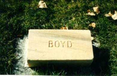 BURBRIDGE, BOYD - Delta County, Colorado | BOYD BURBRIDGE - Colorado Gravestone Photos