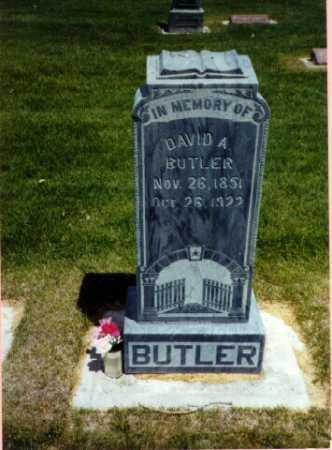 BUTLER, DAVID - Delta County, Colorado   DAVID BUTLER - Colorado Gravestone Photos