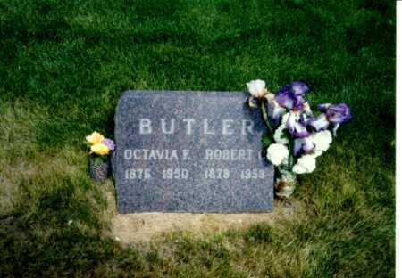 BUTLER, ROBERT - Delta County, Colorado   ROBERT BUTLER - Colorado Gravestone Photos