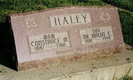 HALEY, DR. WALDO E. - Delta County, Colorado | DR. WALDO E. HALEY - Colorado Gravestone Photos