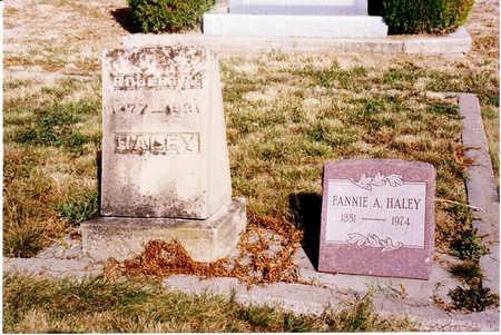 PERRY HALEY, FANNIE A. - Delta County, Colorado | FANNIE A. PERRY HALEY - Colorado Gravestone Photos