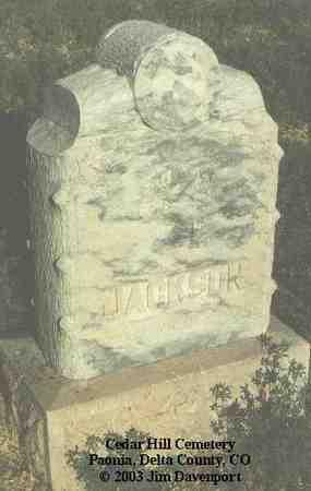 JACKSON, JULIA - Delta County, Colorado | JULIA JACKSON - Colorado Gravestone Photos