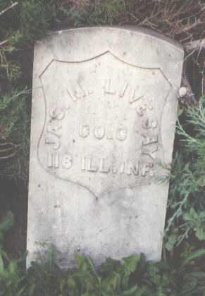 LIVESAY, JAMES M. - Delta County, Colorado | JAMES M. LIVESAY - Colorado Gravestone Photos