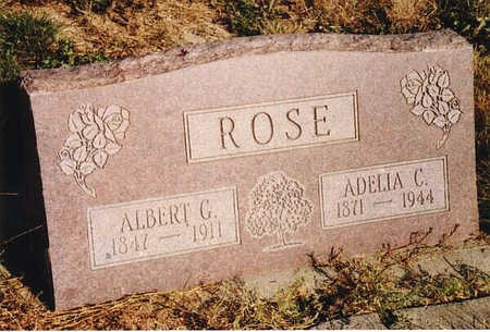 HALEY ROSE, ADELIA C. - Delta County, Colorado | ADELIA C. HALEY ROSE - Colorado Gravestone Photos