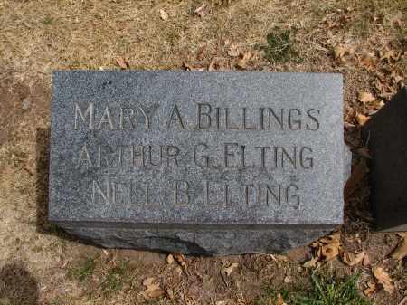 BILLINGS, MARY A. - Denver County, Colorado   MARY A. BILLINGS - Colorado Gravestone Photos