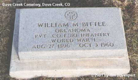 BITTLE, WILLIAM M. - Dolores County, Colorado | WILLIAM M. BITTLE - Colorado Gravestone Photos