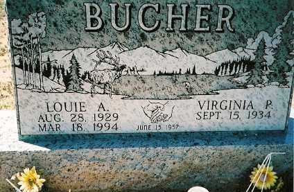 BUCHER, LOUIE A - Dolores County, Colorado | LOUIE A BUCHER - Colorado Gravestone Photos