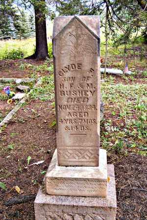 BUSHEY, CLYDE F. - Dolores County, Colorado | CLYDE F. BUSHEY - Colorado Gravestone Photos