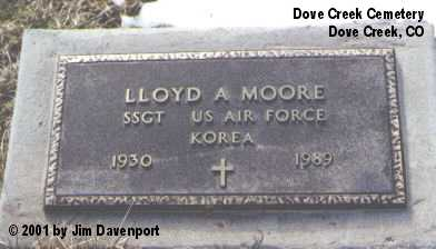 MOORE, LLOYD A. - Dolores County, Colorado | LLOYD A. MOORE - Colorado Gravestone Photos