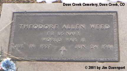 WEED, THEODORE ALLEN - Dolores County, Colorado | THEODORE ALLEN WEED - Colorado Gravestone Photos