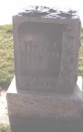 CANTRIL, NELSON T. - Douglas County, Colorado   NELSON T. CANTRIL - Colorado Gravestone Photos
