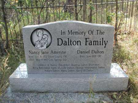 DALTON, DANIEL - Douglas County, Colorado | DANIEL DALTON - Colorado Gravestone Photos