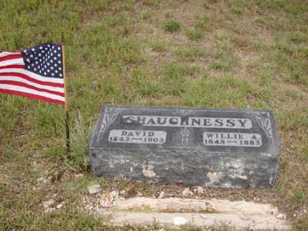 SHAUGHNESSY, DAVID - Douglas County, Colorado | DAVID SHAUGHNESSY - Colorado Gravestone Photos