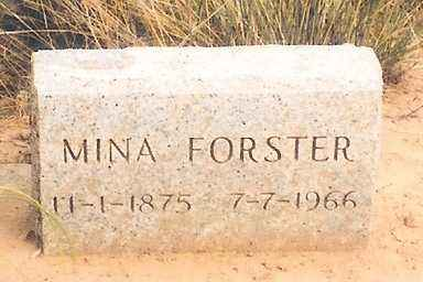 "FORSTER FORSTER, MINA ""WILHELMINA"" - Eagle County, Colorado 