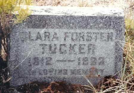 TUCKER, CLARA ALICE - Eagle County, Colorado | CLARA ALICE TUCKER - Colorado Gravestone Photos