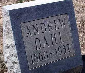 DAHL, ANDREW - Elbert County, Colorado | ANDREW DAHL - Colorado Gravestone Photos