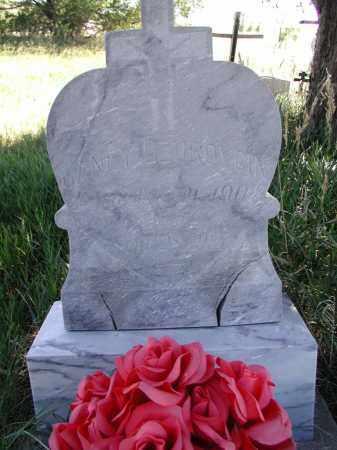 DZUROVCIN, JANEY - Elbert County, Colorado | JANEY DZUROVCIN - Colorado Gravestone Photos