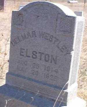 ELSTON, DELMAR WESTLEY - Elbert County, Colorado   DELMAR WESTLEY ELSTON - Colorado Gravestone Photos