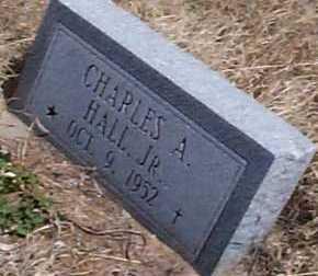 HALL, CHARLES A., JR. - Elbert County, Colorado | CHARLES A., JR. HALL - Colorado Gravestone Photos