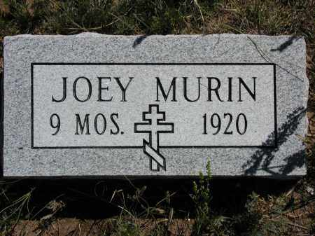 MURIN, JOEY - Elbert County, Colorado   JOEY MURIN - Colorado Gravestone Photos