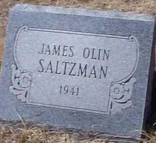 SALTZMAN, JAMES OLIN - Elbert County, Colorado | JAMES OLIN SALTZMAN - Colorado Gravestone Photos