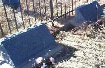SCHILLINGER, MARY ANN - Elbert County, Colorado | MARY ANN SCHILLINGER - Colorado Gravestone Photos