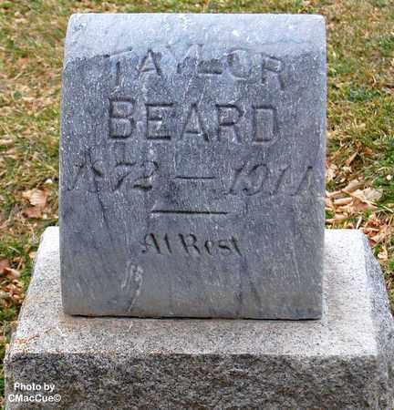 BEARD, TAYLOR - El Paso County, Colorado | TAYLOR BEARD - Colorado Gravestone Photos