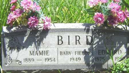 BIRD, MAMIE - El Paso County, Colorado | MAMIE BIRD - Colorado Gravestone Photos