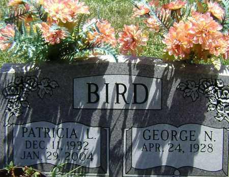 BIRD, PATRICIA L - El Paso County, Colorado   PATRICIA L BIRD - Colorado Gravestone Photos