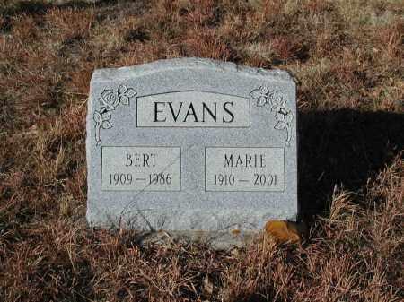EVANS, BERT - El Paso County, Colorado | BERT EVANS - Colorado Gravestone Photos