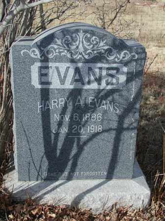 EVANS, HARRY A. - El Paso County, Colorado   HARRY A. EVANS - Colorado Gravestone Photos