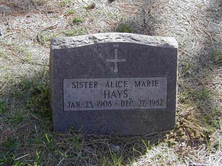 HAYS, SR. ALICE MARIE - El Paso County, Colorado | SR. ALICE MARIE HAYS - Colorado Gravestone Photos