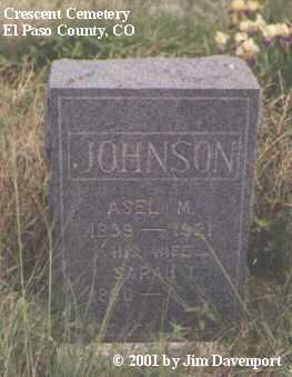 JOHNSON, SARAH J. - El Paso County, Colorado | SARAH J. JOHNSON - Colorado Gravestone Photos