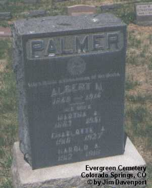 PALMER, ALBERT N. - El Paso County, Colorado | ALBERT N. PALMER - Colorado Gravestone Photos