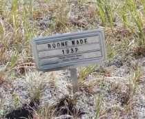 WADE, HAMPTON BOONE - El Paso County, Colorado | HAMPTON BOONE WADE - Colorado Gravestone Photos