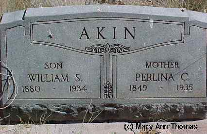 AKIN, WILLIAM - Fremont County, Colorado | WILLIAM AKIN - Colorado Gravestone Photos