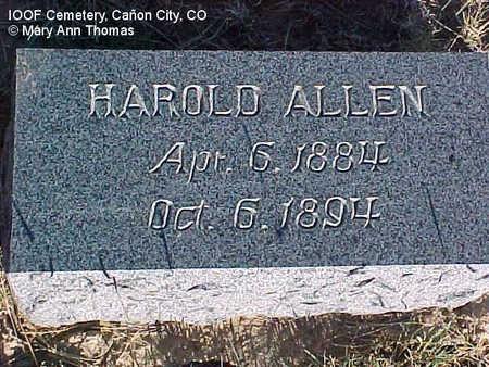 ALLEN, HAROLD - Fremont County, Colorado | HAROLD ALLEN - Colorado Gravestone Photos